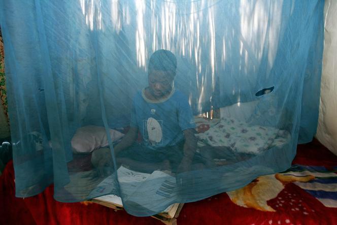 Le paludisme fait plus de 600 000 morts dans le monde chaque année, dont 90 %.