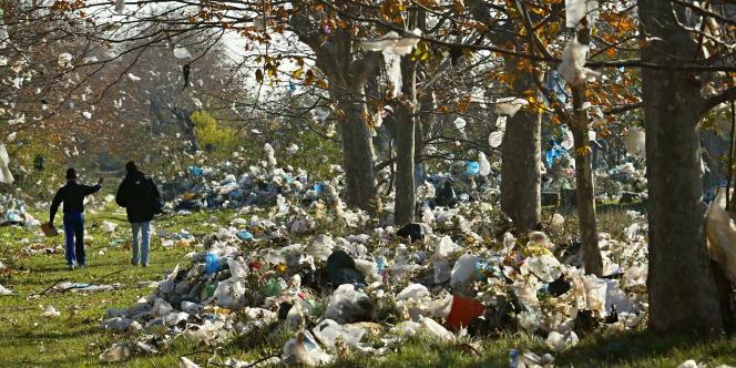 Vue des champs environnant la décharge à ciel ouvert d'Entressen (Bouches-du-Rhône), sur lesquels une pluie de sacs plastiques s'est abattue en novembre 2004.