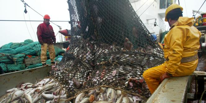 Des pêcheurs français sur le chalutier