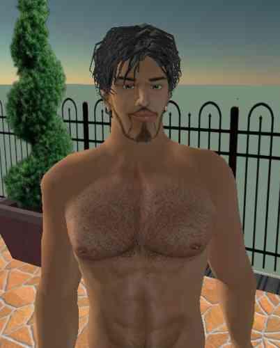 """Les """"escorts"""" du jeu Second Life"""