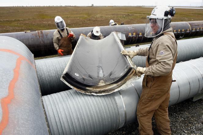 La construction de l'oléoduc Keystone XL, censé acheminer le pétrole des sables bitumineux de l'Alberta vers le golfe du Mexique, est-elle en rapport avec la décision du gouvernement canadien de sortir la baleine à bosse des espèces menacées.