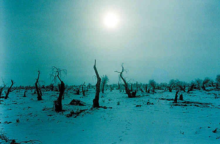 Inaccessible. Le désert du Taklamakan recèle de prodigieuses réserves de pétrole et de gaz naturel, mais aussi des camps de travaux forcés. Il est pour sa plus grande partie interdit aux étrangers.