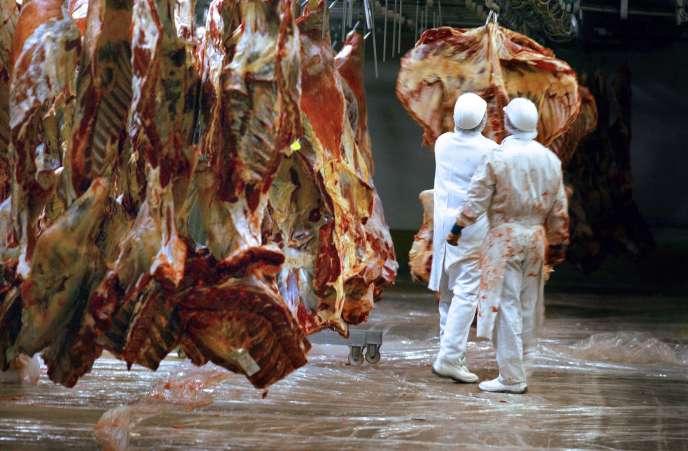 Des équarrisseurs dans un abattoir au Lion-d'Angers (Maine-et-Loire).