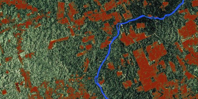 Une image prise en 1992 par le satellite ERS-1 de l'Agence spatiale européenne (ESA), montre une région de la forêt tropicale amazonienne - de 100km de côté - qui a subi des coupes claires.