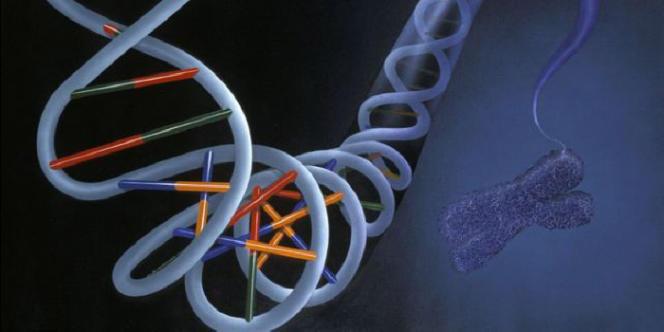 Les biohackers se disent conscients des risques inhérents au génie génétique, même s'ils affirment qu'ils sont très gérables.