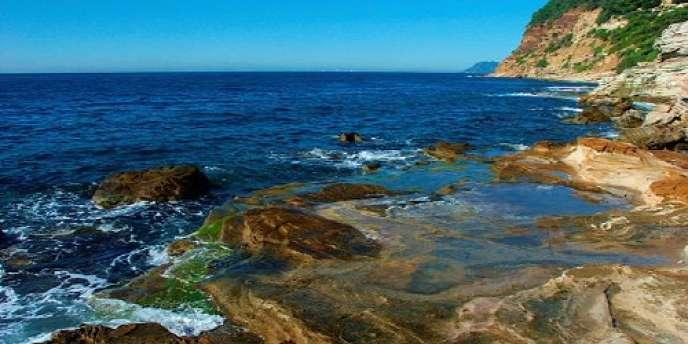 La Méditerranée est bordée par vingt-deux pays et territoires riverains qui comptent 450 millions d'habitants. Cette mer abrite environ 20 % de la biodiversité marine mondiale pour 0,8 % de la surface de l'océan, mais n'est protégée qu'à 4,6 % de sa superficie.