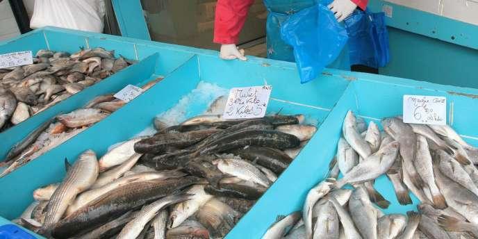 La France importe 62 % de sa consommation de produits de la mer.