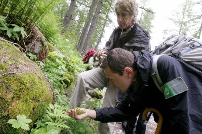 Des chercheurs travaillent à l'inventaire de la biodiversité dans le parc national du Mercantour.