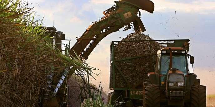 Louis Dreyfus est le numero deux du sucre et de l'éthanol au Brésil.