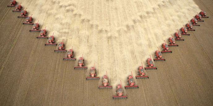 Des agriculteurs récoltent du soja destiné à produire du biocarburant à Tangara da Serra, dans l'état du Mato Grosso, au Brésil. Le pays est le deuxième producteur mondial après les Etats-Unis.