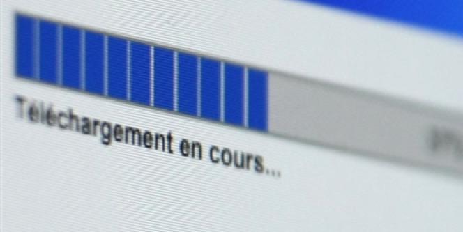Le contournement du juge dans le cadre d'une amende pour mise à disposition d'œuvres sur Internet pourrait être inconstitutionnel.
