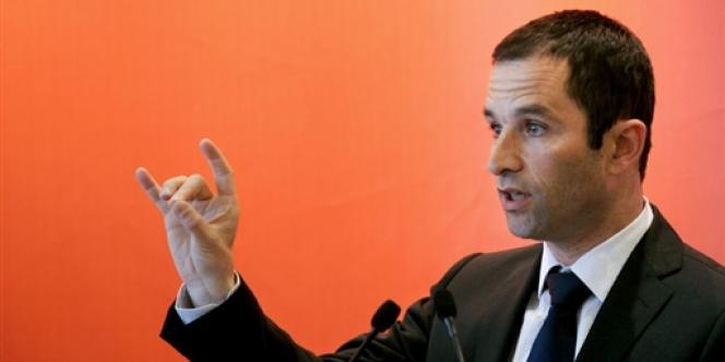 Le projet de loi sur l'Économie sociale et solidaire (ESS) de Benoît Hamon doit être discuté à l'Assemblée nationale au printemps 2014.