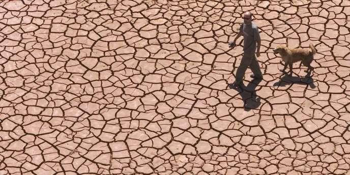 Aucune région ne sera épargnée par la hausse des températures, prévient le rapport de la Banque mondiale publié le 18 novembre.