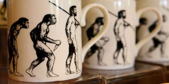 Mugs vendus à Down House, la maison de Charles Darwin.