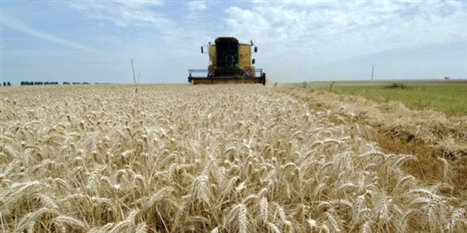 Barack Obama a signé, vendredi 7 février, une nouvelle loi agricole qui protège les agriculteurs américains et met les Etats-Unis en contravention avec les règles de l'Organisation mondiale du commerce (OMC).