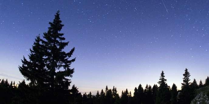 Pluie d'étoiles filantes au-dessus du Mont-Tendre, dans le Jura suisse, le 12 août.