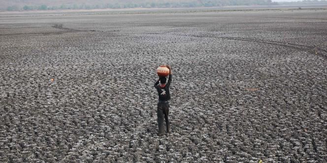 Terres dévastées par la sécheresse en Inde.