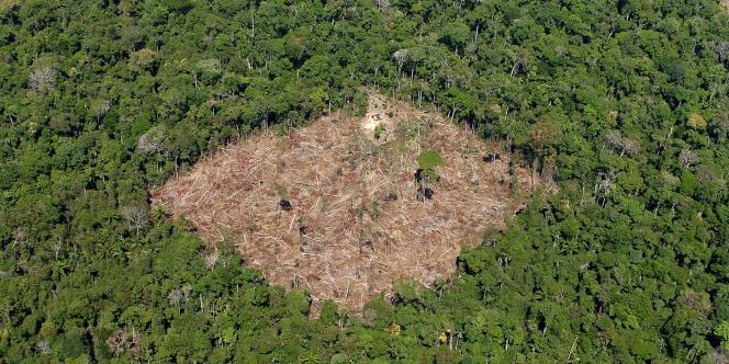 La déforestation en Amazonie. Ici, dans l'Etat de Para.