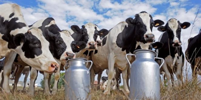 Les 5 milliards d'euros d'aide annuelle alloués aux producteurs européens font