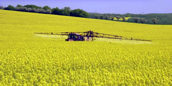 La baisse de moitié de l'usage des pesticides d'ici à 2018 faisait partie des principaux engagements du Grenelle de l'environnement.