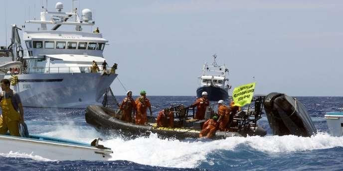 Des militants de Greenpeace, le 4 juin.