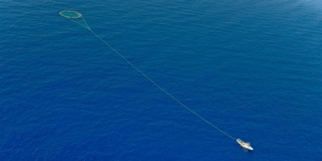 Pêche au thon en Méditerranée, mai 2010.