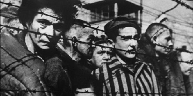 Photo de déportés derrière les barbelés prise en 1945, au moment de la libération du camp de concentration d'Auschwitz.