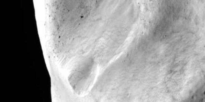 L'astéroïde Lutetia.