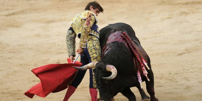 Le matador Miguel Tendero face au taureau El Pilar, le 13 juillet 2010 au festival de San Fermin.