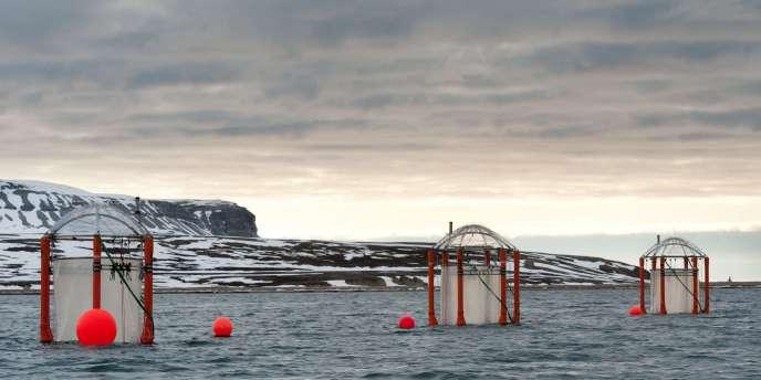Dans le fjord norvégien de Ny-Aalesund, les chercheurs simulent l'évolution attendue de l'acidité des océans d'ici à 2150 entraînée par la hausse des émissions de CO2.