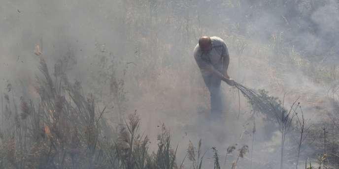L'annonce de Kiev intervient après que la Russie a décidé de décréter un embargo sur toutes les exportations de céréales.