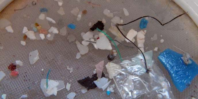 Les auteurs de la recherche ont récupéré plus de 64 000 morceaux de plastique en 6 100 lieux différents, qu'ils ont répertoriés annuellement.