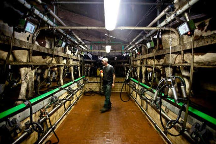 Avril 2015 marquera la fin des quotas laitiers en Europe. En Hollande, les éleveurs se préparent à la disparition de cet outil de régulation de la production laitière.