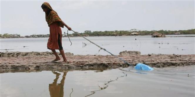 Une jeune fille récupère l'eau d'un étang dans le village de Laxmikhali, au Bangladesh. Ces réserves d'eau, destinées au stockage ou à l'élevage de poissons, sont les plus sujettes à la contamination par l'arsenic.