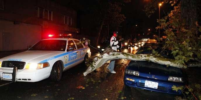 Un piéton photographie une voiture endommagée par la chute d'un arbre à Brooklyn, le 16 septembre 2010.