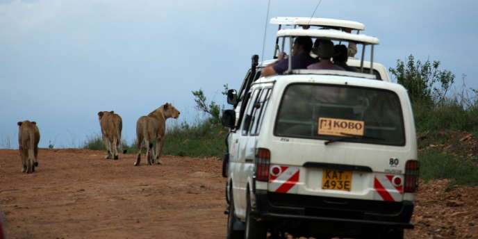 Le gouvernement tanzanien défend le projet de route traversant le Serengeti au nom de ses répercussions économiques.