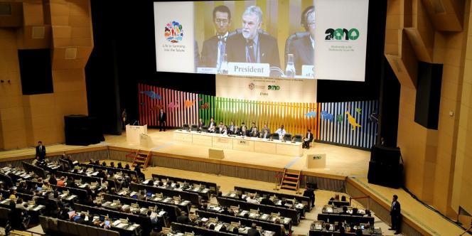 Cérémonie d'ouverture de la dixième Conférence des parties à la Convention sur la diversité biologique (CDB), qui se tient à Nagoya, au Japon, du 18 au 29 octobre.