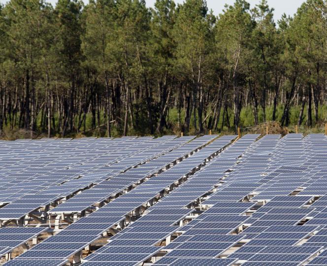 Vue d'une installation de panneaux solaires, à côté des pins, dans la forêt des Landes (sud-ouest de la France).