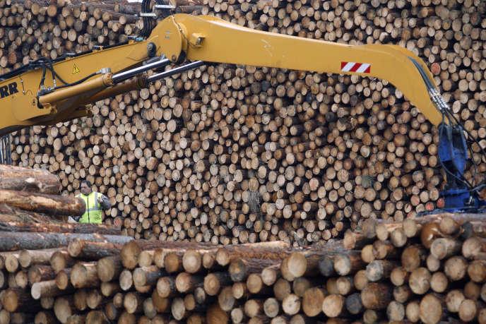 Un rapport du Sénat dévoilé le 8avril critique la politique forestière française et formule des recommandations pour tirer un meilleur parti économique de l'une des plus grandes forêts d'Europe.