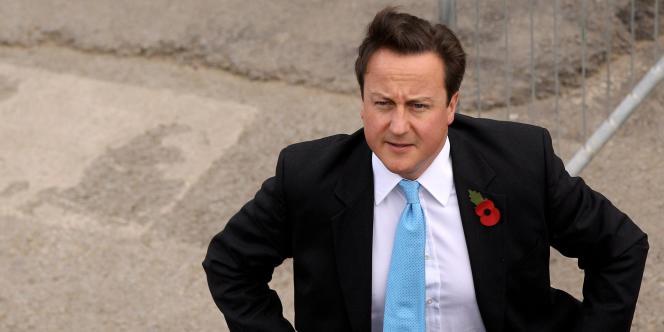 Le premier ministre britannique, David Cameron, le 4 novembre 2010.