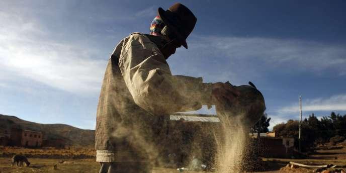 Un producteur de céréales, en Bolivie. Le pays nationalise des pans considérés comme stratégiques de son économie.