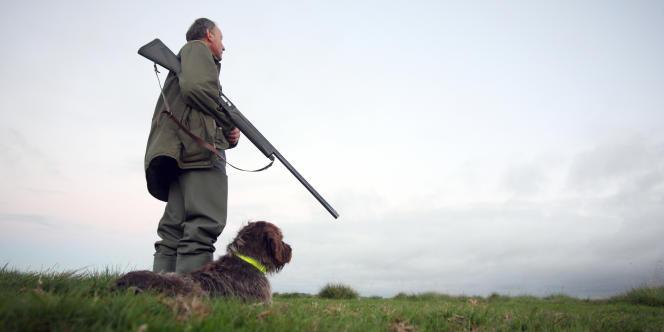Un chasseur patiente avec son chien dans les marais de Graignes (Manche), lors de l'ouverture de la chasse au gibier d'eau sur les fleuves, rivières et marais en août 2010.