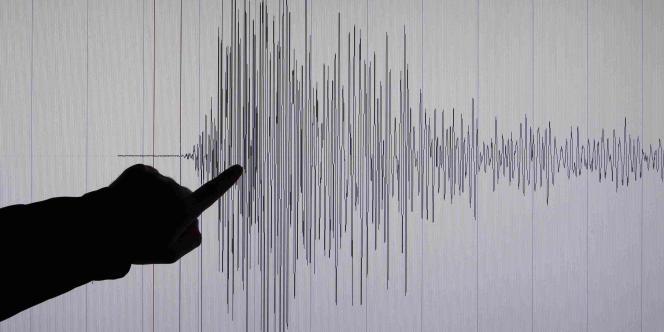 Un scientifique allemand pointe les plus fortes secousses enregistrées lors du séisme, qui a atteint la magnitude de 8,9 sur l'échelle de Richter.