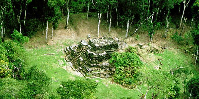 Perdue dans la jungle du Guatemala, la cité maya Naachtun est en proie à de nombreux pillages.
