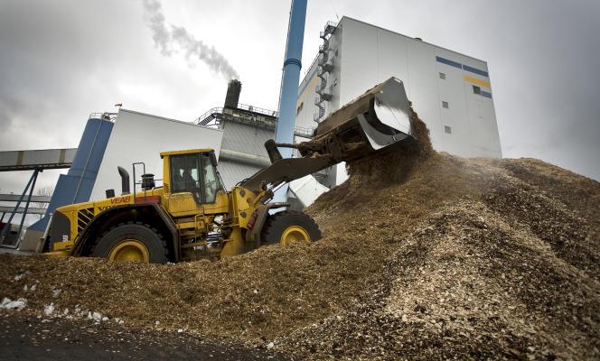 Un tas de copeaux de bois près de l'usine électrique à biomasse de Växjö en Suède en mars 2008.