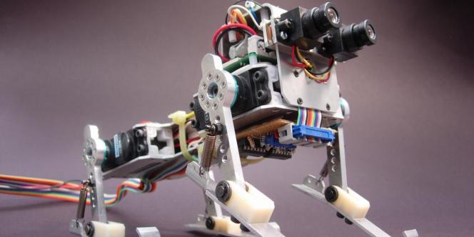 Un robot canin, conçu au Laboratoire de la robotique inspirée par la vie, à Zürich.