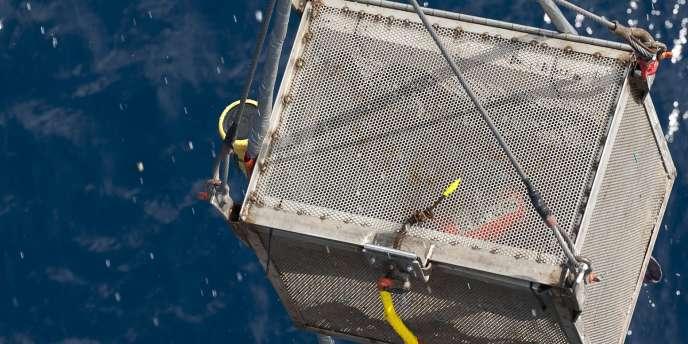 La seconde boîte noire du vol Rio-Paris est remontée à la surface, lundi 2 mai 2011.