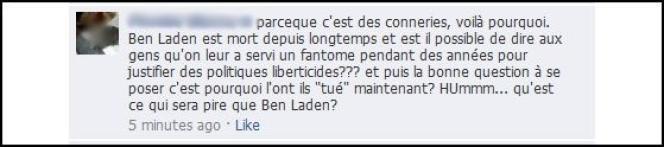 Capture d'écran d'un commentaire à un article sur la mort d'Oussama Ben Laden sur la page Facebook du Monde.fr.