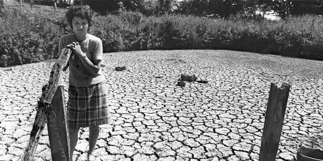 Une agricultrice de l'Orne regarde sa mare asséchée par la sécheresse le 16 juin 1976.