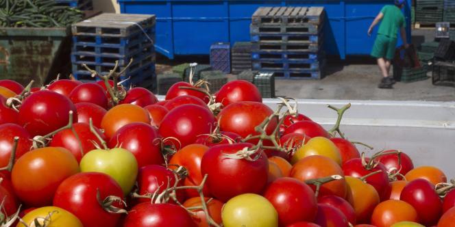 Un homme de 47 ans avait consommé un sandwich jambon-beurre contenant de la salade et des tomates dans une brasserie de Saint-Dié.